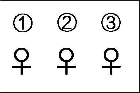 1姫、2姫、3も姫