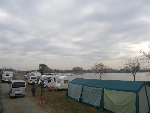 湖畔のさくらキャンプ